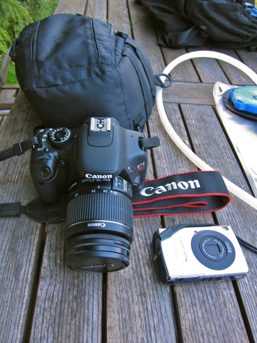 It's all about the DSLR...