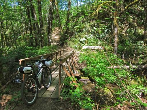 Bridge on the Log Train Trail...