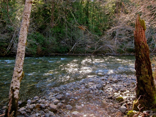 Scouting the Sooke River...