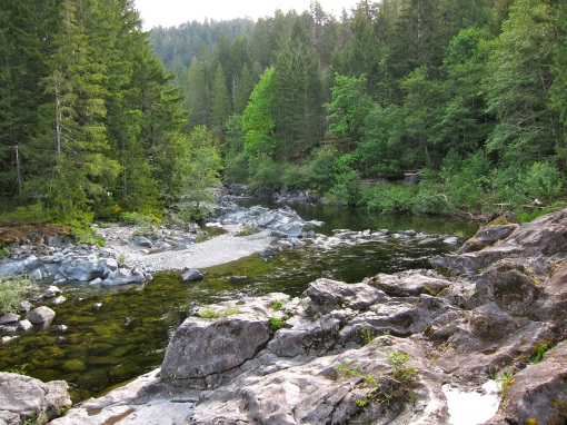 The mighty Sooke River...
